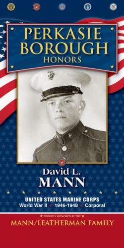 David L Mann